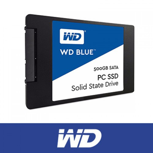 WD 500GB BLUE SSD